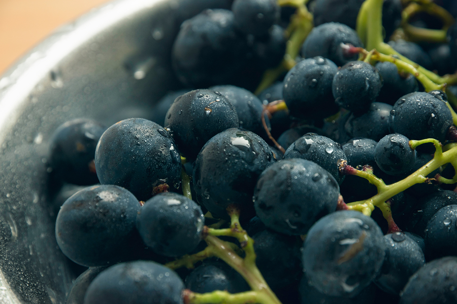 Fresh dark grapes in a bowl